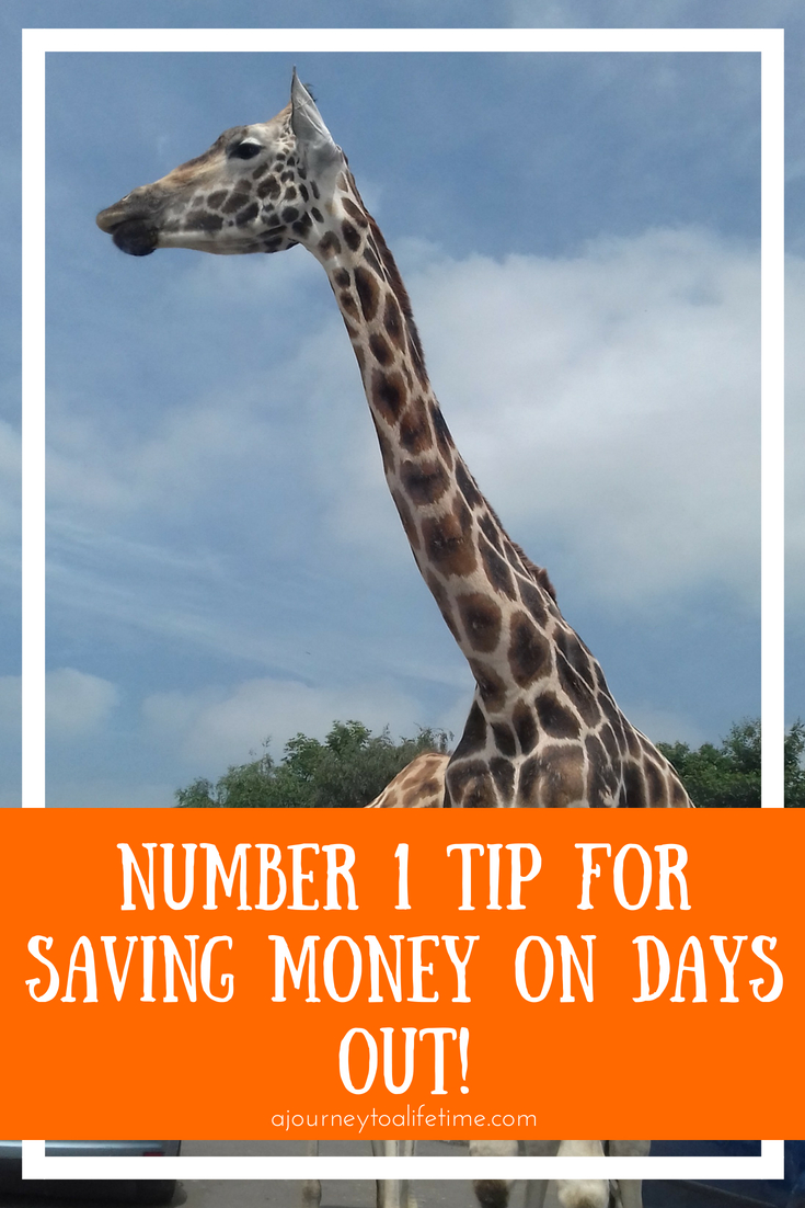 The number 1 tip for saving money on family days out. Family trips on a budget while gaining quality time.